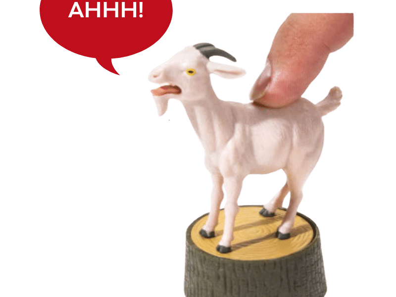 The Screaming Goat 6