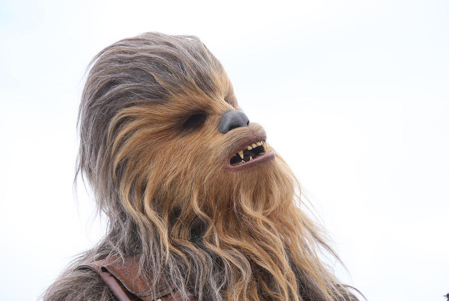 Roaring Chewbacca Mask 5