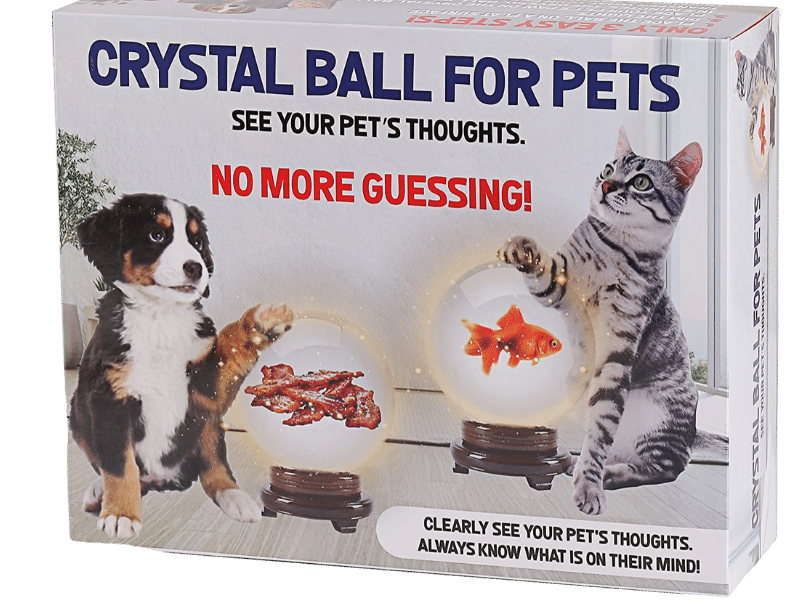 The Magic Crystal Ball for Pets 4