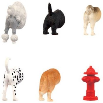 funny animal fridge magnets