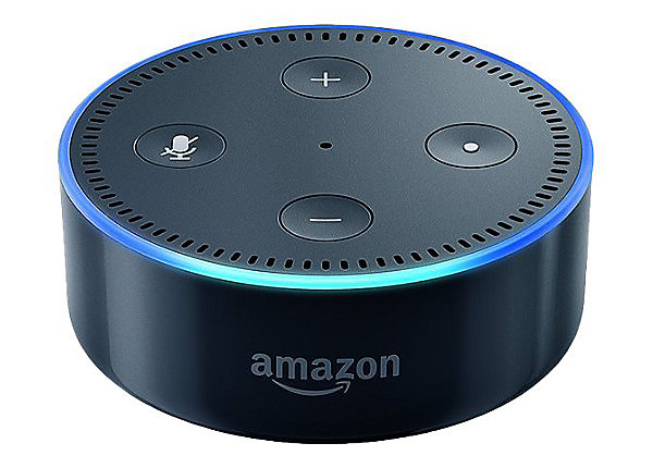 alexa enable voice controlled smart device