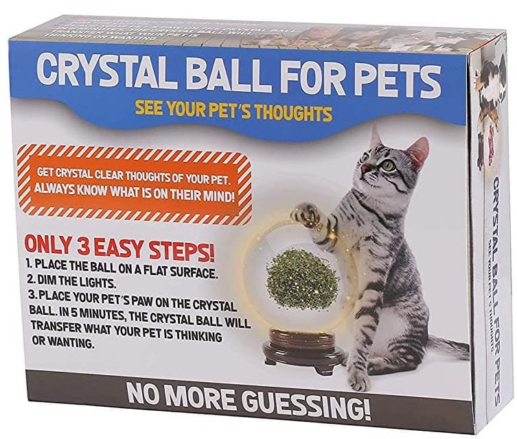 The Magic Crystal Ball for Pets 3