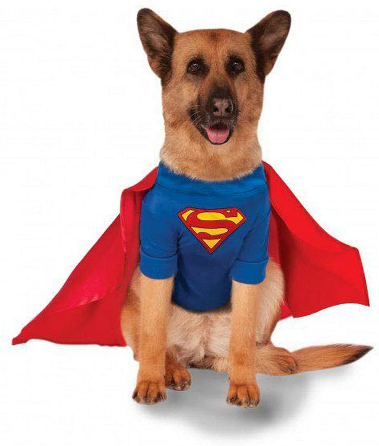 The Superman Dog Costume 6