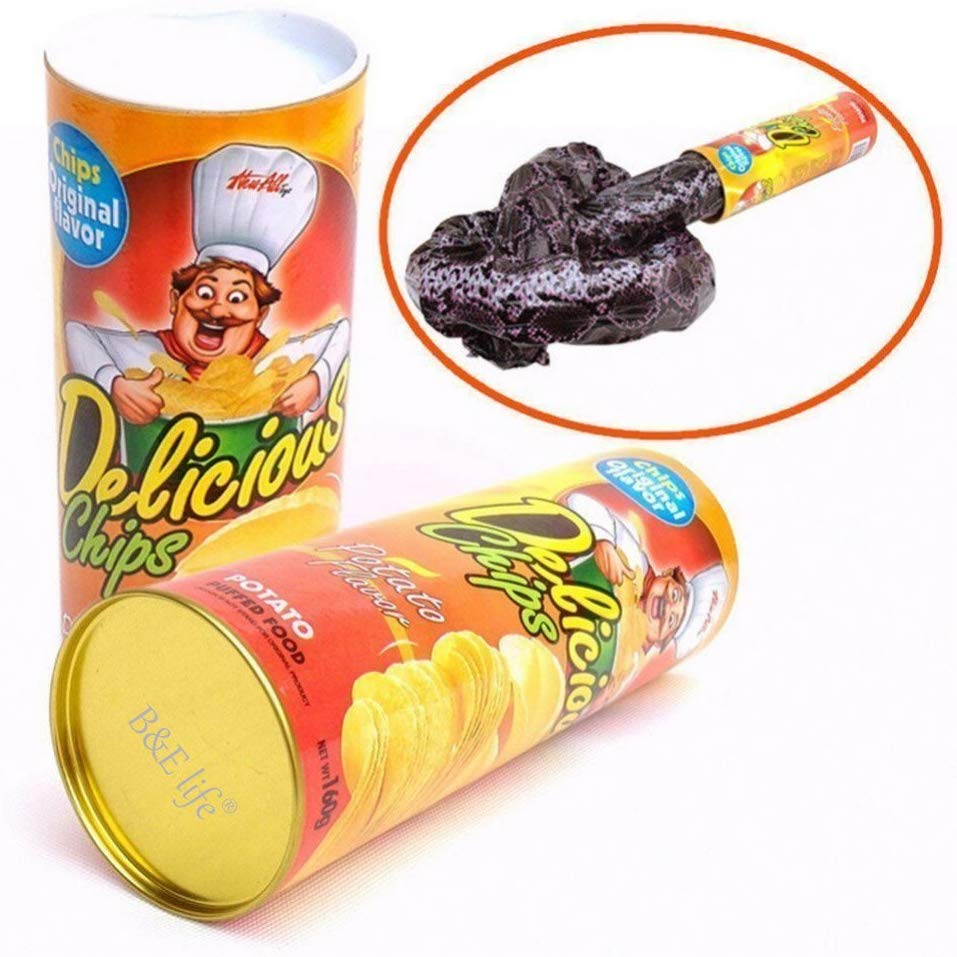 prank potato chip can with snake