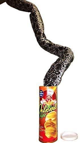 snake potato chip can